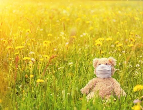 Unser täglicher Kampf gegen die Pollen…